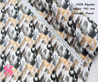 L23-gatos-astutos-americano-tejidos-algodón-estampado-percal,Tejido Estampado Gatos