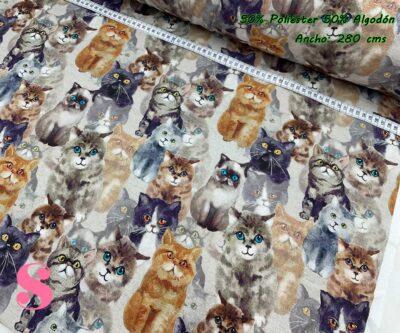 3-tela-de-tapiz,tela-loneta,tela-para-forrar-sillas,telas-de-exterior,telas-rústicas,Loneta Estampada Gatos