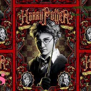 0032 Tejido Estampado Harry Potter Prisoner of Azkaban